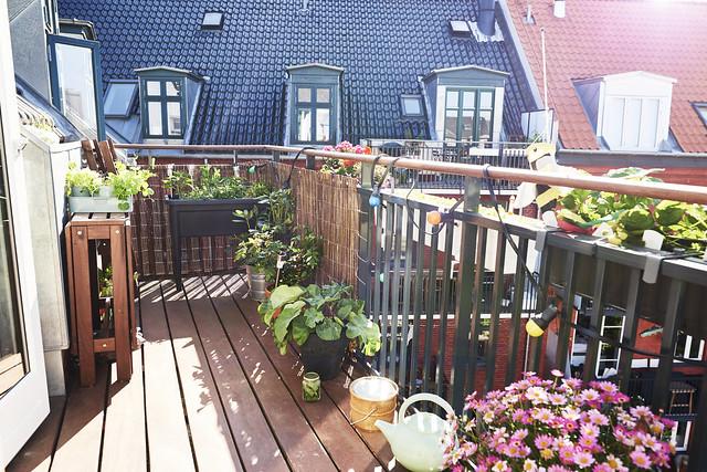Tipy a zajímavosti / I na balkóně lze vypěstovat krásnou zahrádku