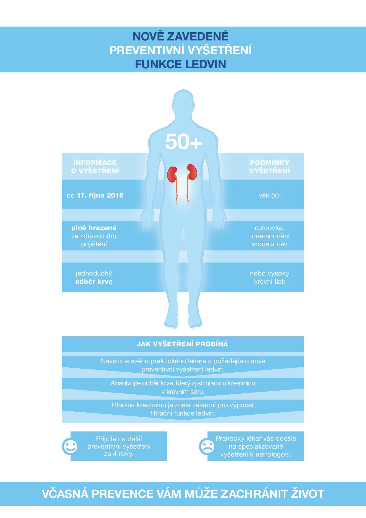 fotky / Infografika ledviny